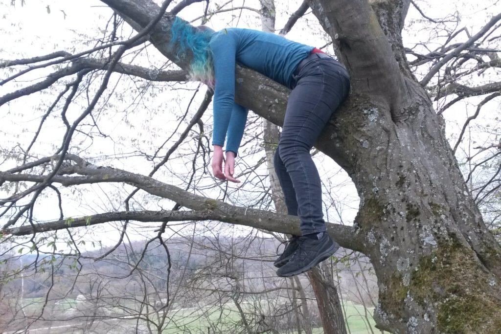 externes Abitur Baum