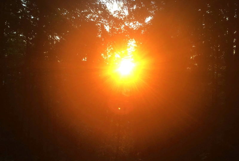 Resilienz Sonne